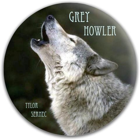 Grey Wolf Dynamic Discs Fuzion Warden Putter Disc