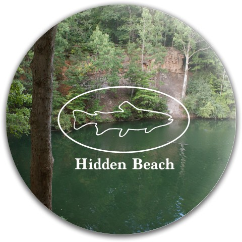 Hidden Beach Dynamic Discs Fuzion Judge Putter Disc