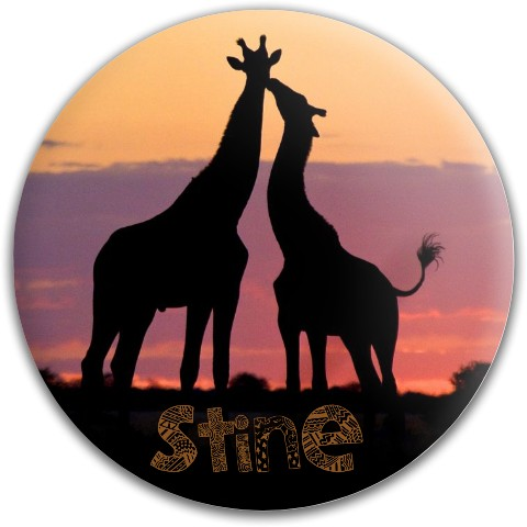 Stine2 Westside Tournament Harp Putter Disc