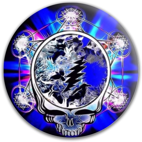 Wilderness Stealie Dynamic Discs Fuzion Verdict Midrange Disc