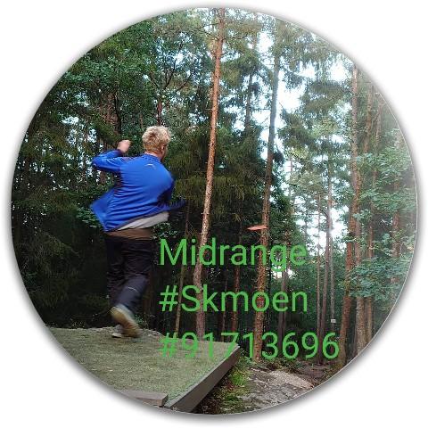Latitude 64 Gold Line Compass Midrange Disc  #73358