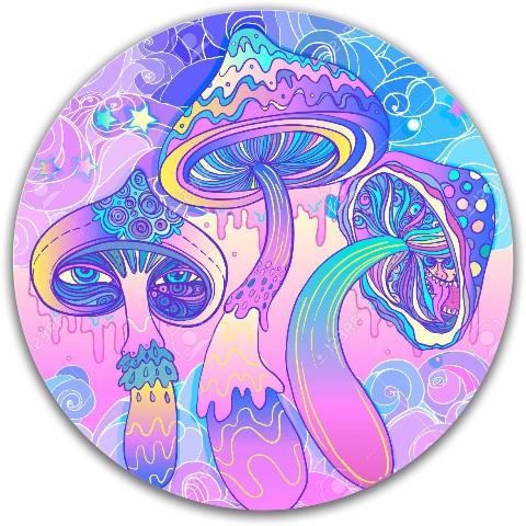 Dynamic Discs Fuzion Justice Midrange Disc #77386