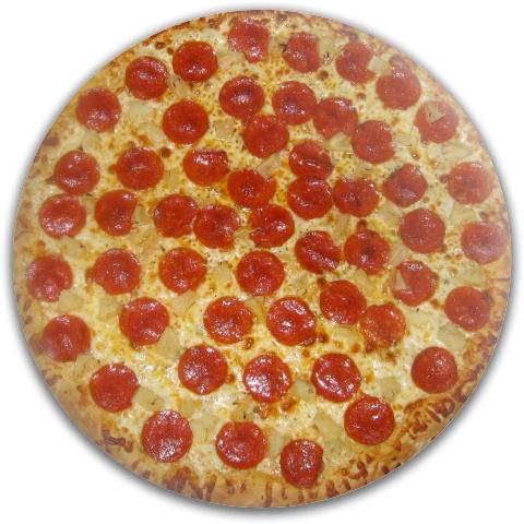 Pizza Disc Dynamic Discs Fuzion Judge Putter Disc