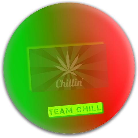 Team Chill Dynamic Discs Fuzion Judge Putter Disc