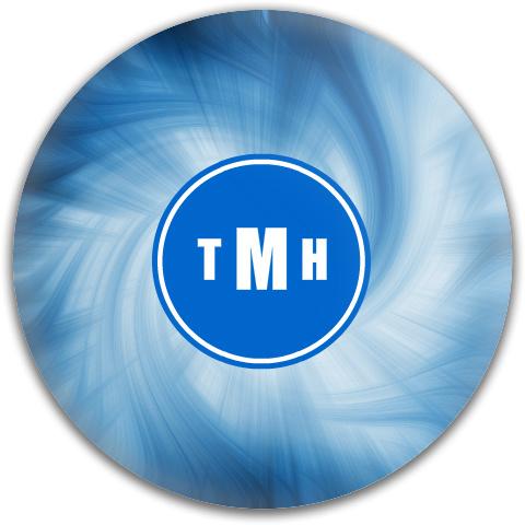 Trent's Disc Dynamic Discs Fuzion Freedom Driver Disc