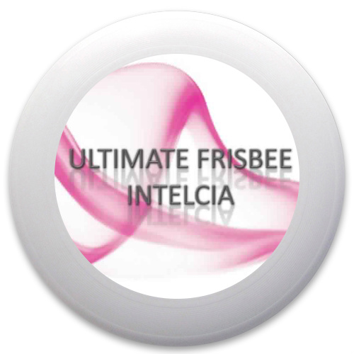 Innova Pulsar Custom Ultimate Disc #33095