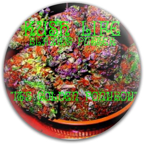 It's My Hit Dynamic Discs Fuzion Judge Putter Disc