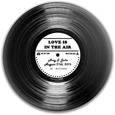 Wedding Holland Dynamic Discs Fuzion Truth Midrange Disc