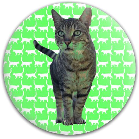 Dynamic Discs Fuzion Judge Putter Disc #54696