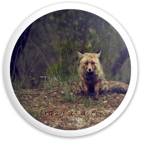 Dynamic Discs Latitude 64 Opto Explorer #57290