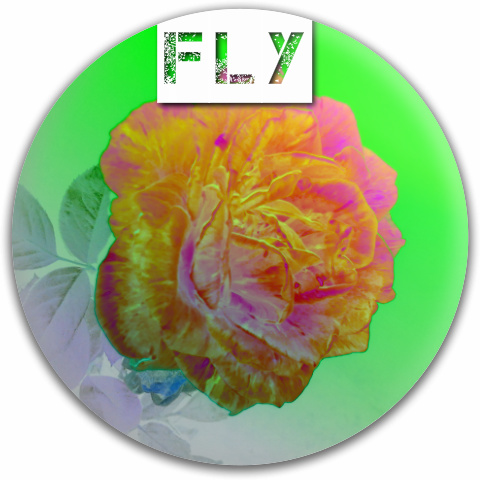 Fly Discs Rosa Fly MVP Neutron Medium Ion Putter Disc